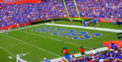 Gainesville Gators image